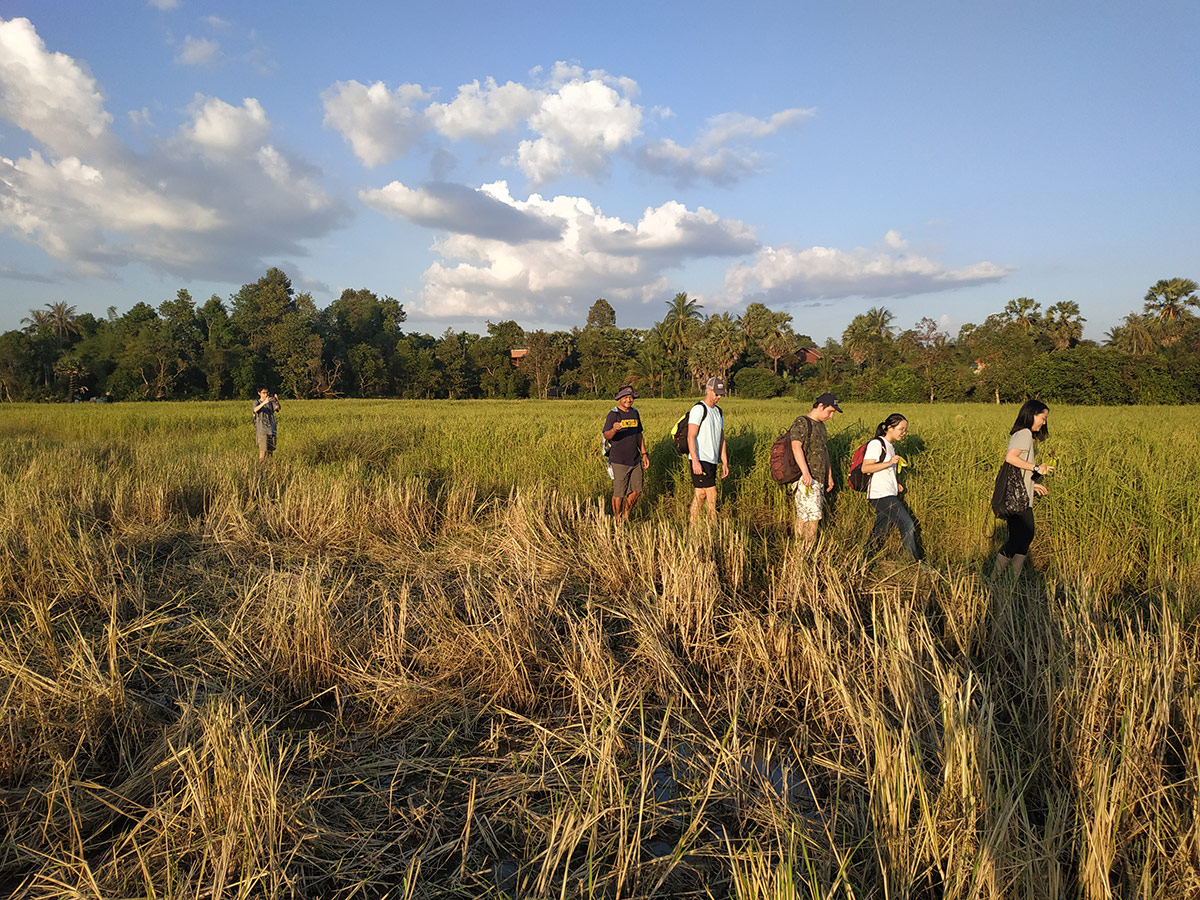 Students walking through a field in Cambodia during their interdisciplinary learning trip